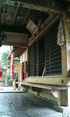 牡丹の長谷寺