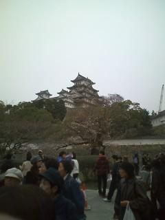 姫路城と徳島・霊山寺・渦潮